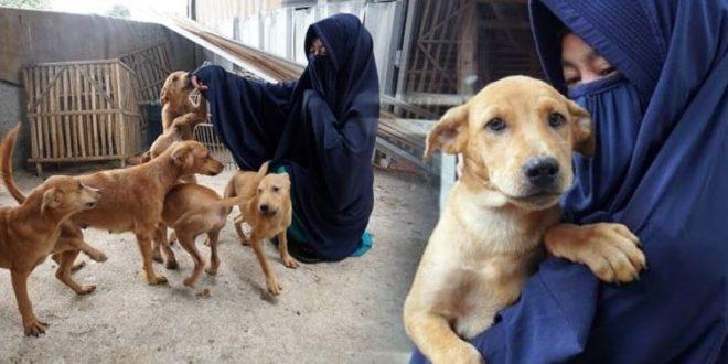Viral Wanita Bercadar Pelihara Anjing, Dr. Zain: Ada Standar Ganda